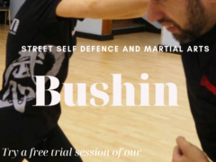 Bushin | Street Self Defense and Martial Arts